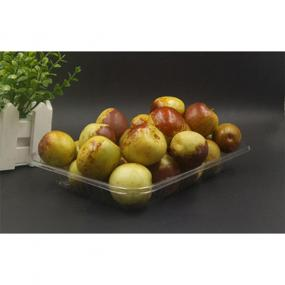 Rectangular fruit & vegetable shallow tray
