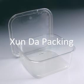 Clear plastic food box