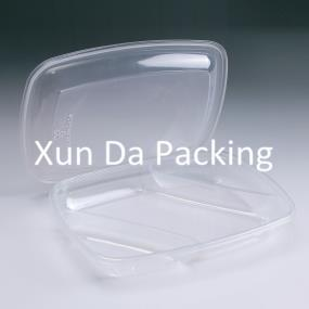 Disposable plastic clear food container
