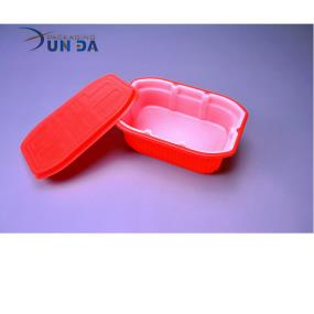China Manufacturer Wholesale Plastic Take Away Fast Food Container With Lid