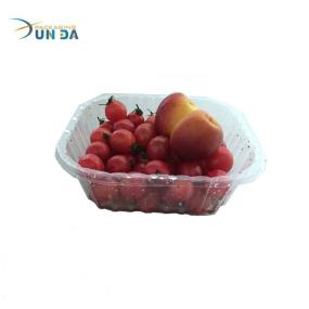 Trade Assurance Food Grade Blister Plastic Fruit Tray